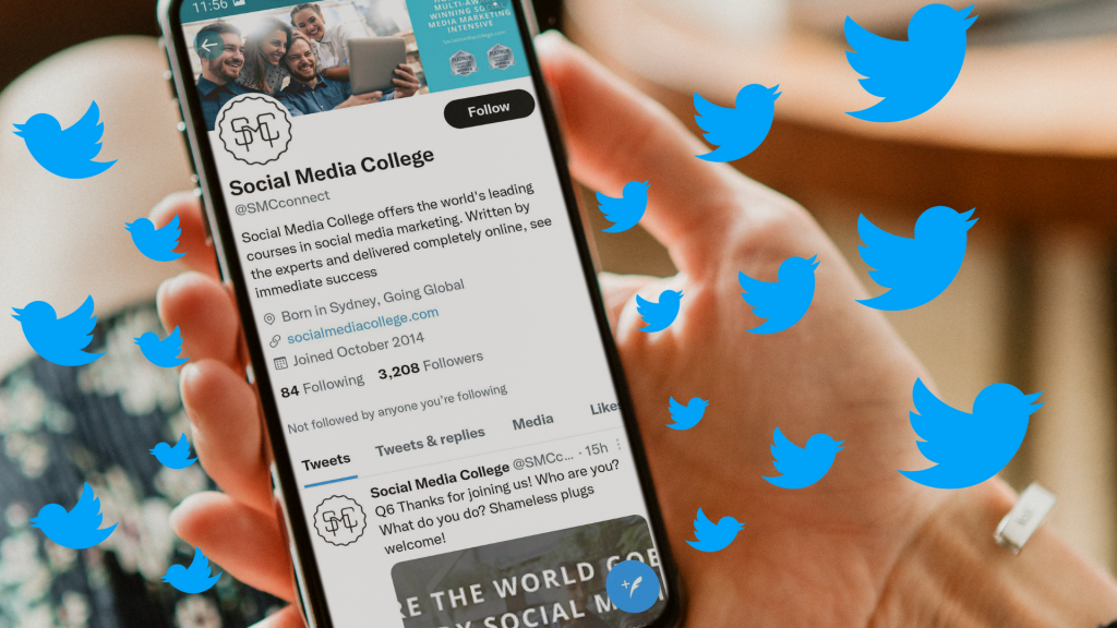How to Get Twitter Followers to Grow Your Social Following